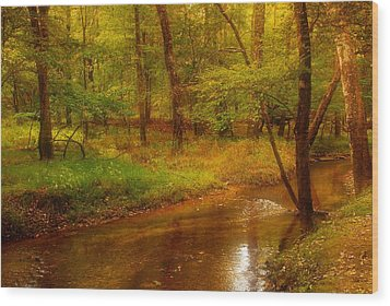 Tranquility Stream - Allaire State Park Wood Print by Angie Tirado