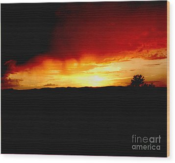 Tree At Sunset Wood Print by Merton Allen