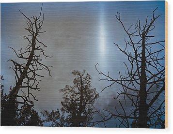 Tree Flash Wood Print by Scott Sawyer