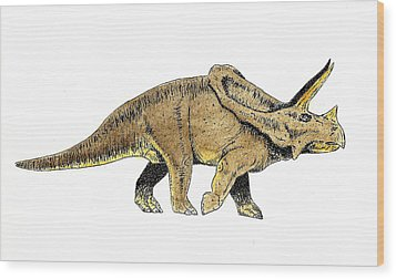 Triceratops Wood Print by Michael Vigliotti