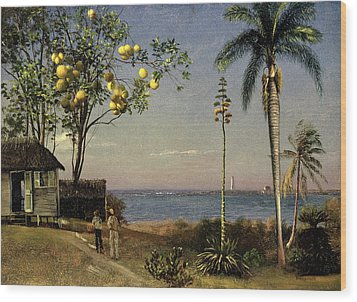 Tropical Scene Wood Print by Albert Bierstadt