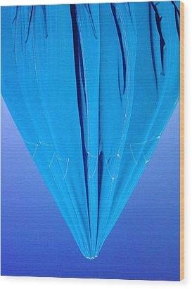 True Blue Wood Print by Anna Villarreal Garbis