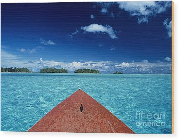 Tuamotu Islands, Raiatea Wood Print by William Waterfall - Printscapes