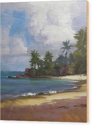 Turtle Beach Wood Print by Richard Robinson