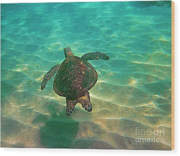 Turtle Sailing Over Sand Wood Print by Bette Phelan
