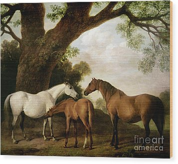 Two Mares And A Foal Wood Print by George Stubbs