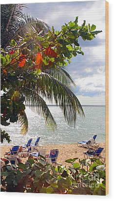 Under The Palms In Puerto Rico Wood Print by Madeline Ellis