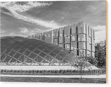University Of Chicago Mansueto Library Wood Print by University Icons
