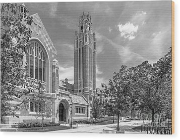 University Of Chicago Saieh Hall For Economics Wood Print by University Icons