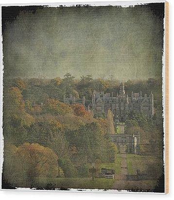 University Of Evansville Wood Print by Martin Crush