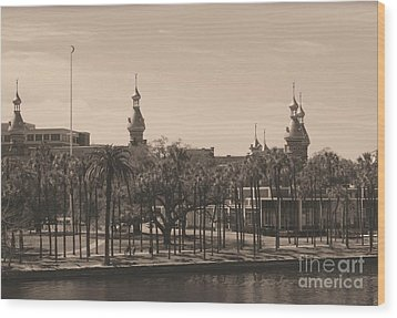 University Of Tampa With Old World Framing Wood Print by Carol Groenen