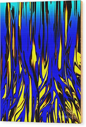 Untitled 7-21-09 Wood Print by David Lane