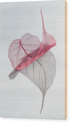 Uplifted Wood Print by Maggie Terlecki