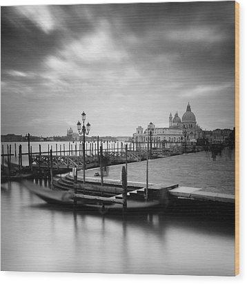 Venice Wood Print by Nina Papiorek