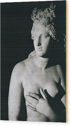 Venus Pudica  Wood Print by Unknown