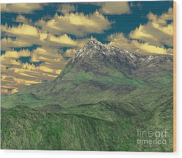 View To The Mountain Wood Print by Gaspar Avila