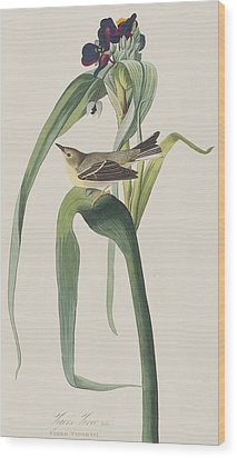 Vigor's Warbler Wood Print by John James Audubon
