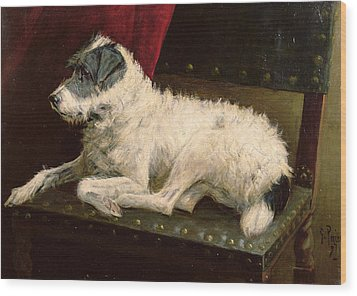 Waiting For Master Wood Print by George Paice