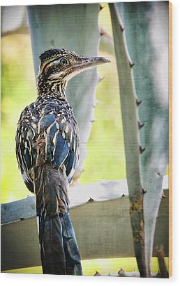Waiting  Wood Print by Saija  Lehtonen