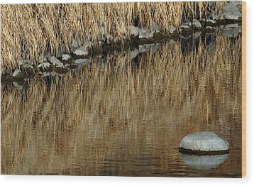 Water Colored  Wood Print by Steven Milner