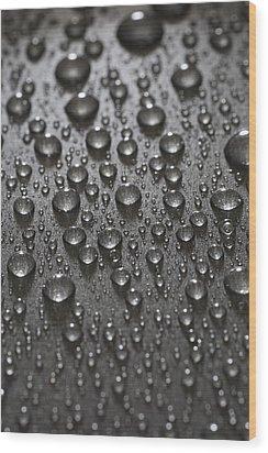 Water Drops Wood Print by Frank Tschakert