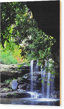 Waterfall And Rhododendron Wood Print by Thomas R Fletcher