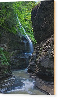 Waterfall In The Gorge Wood Print by Mike Horvath