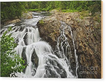 Waterfall In Wilderness Wood Print by Elena Elisseeva
