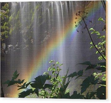 Waterfall Rainbow Wood Print by Marty Koch