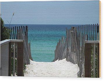 Way To The Beach Wood Print by Susanne Van Hulst