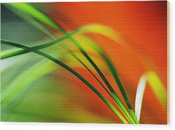 Weeds Wood Print by Catherine Lau