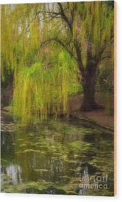 Weeping Pond Wood Print by Fred Lassmann