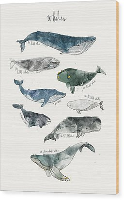 Whales Wood Print by Amy Hamilton
