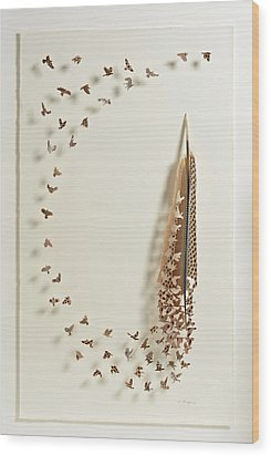 What Happens When You Tip A Feather Upside Down Wood Print by Chris Maynard