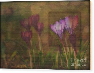 When The Light Paints The Flowers Wood Print by Joy Gerow