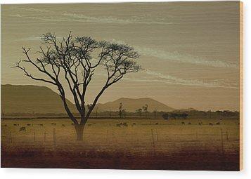 Wherever I May Roam Wood Print by Holly Kempe