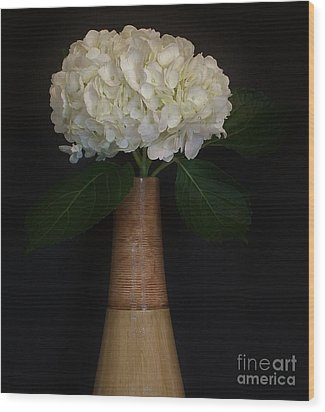 White Hydrangea In Gold Vase Wood Print by Marsha Heiken