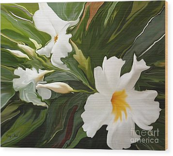 White Jasmine Wood Print by Corey Ford