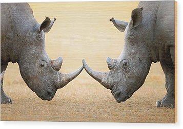 White Rhinoceros  Head To Head Wood Print by Johan Swanepoel