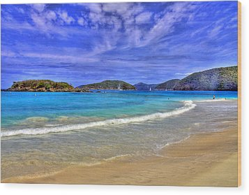 White Sands Beach Wood Print by Scott Mahon