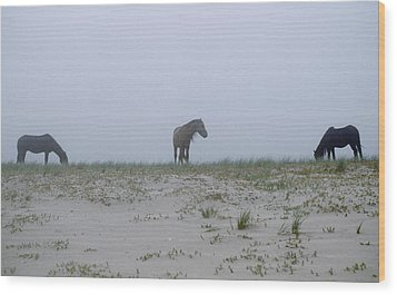 Wild Horses In The Sand Dunes On Sable Wood Print by Justin Guariglia