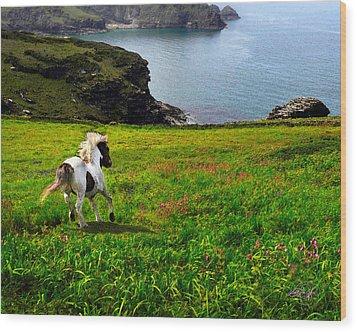 Wild Little Pony Wood Print by Vicki Lea Eggen