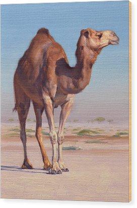 Wilderness Camel Wood Print by Ben Hubbard