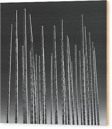 Wind Organ Wood Print by Wim Lanclus