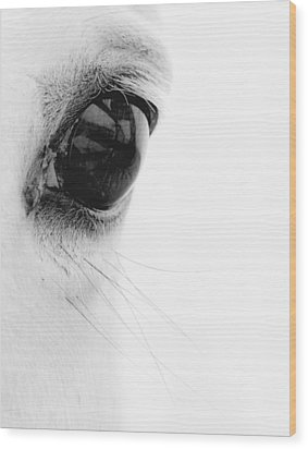 Window To The Soul Wood Print by Ron  McGinnis