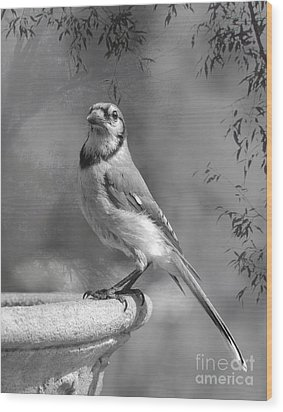 Wings In My Dreams II Wood Print by Jan Piller