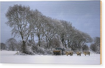 Winter Morning On The Farm Wood Print by Sophie De Roumanie
