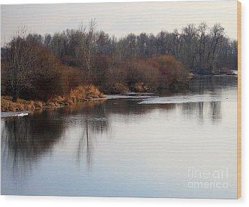 Winter Riverbank Wood Print by Carol Groenen