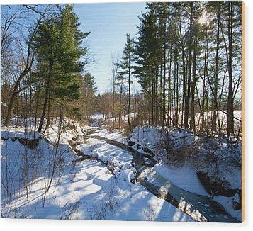 Winter Stream  Wood Print by Tim Fitzwater