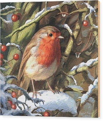 Winters Friend Wood Print by David Price